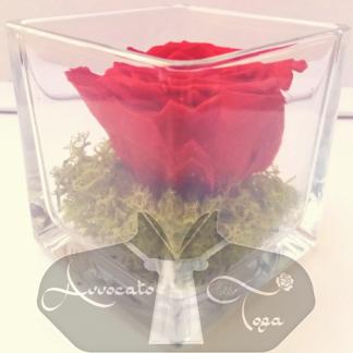 idea-regalo-avvocato-donna-rosa-cubo-vetro-da-scrivania-rossa